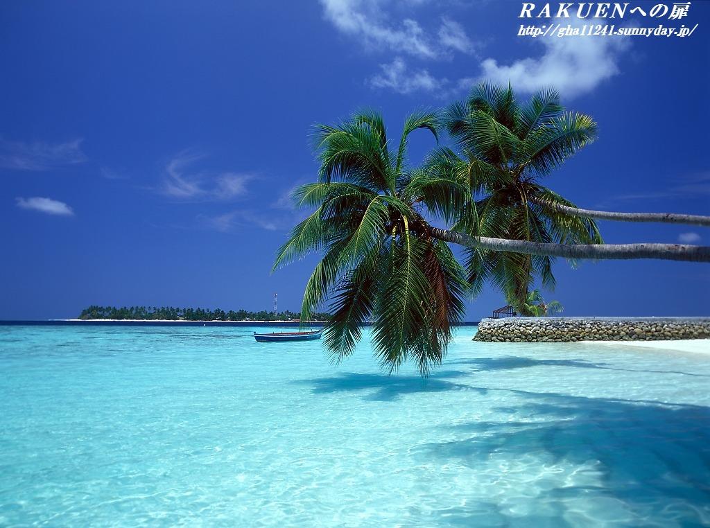 T_maldives_vilureef