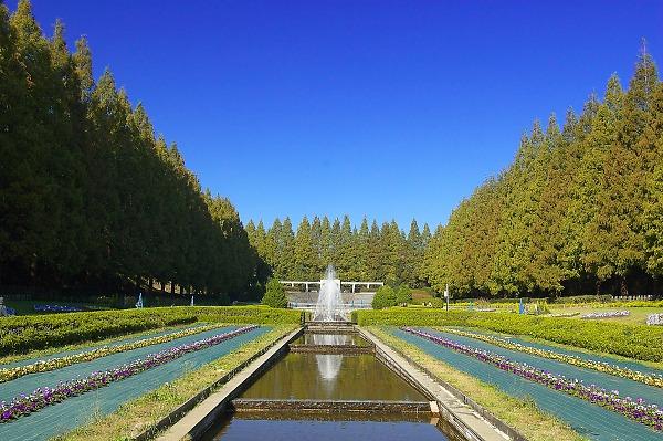 Sagamiharapark12