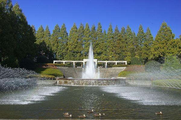 Sagamiharapark13