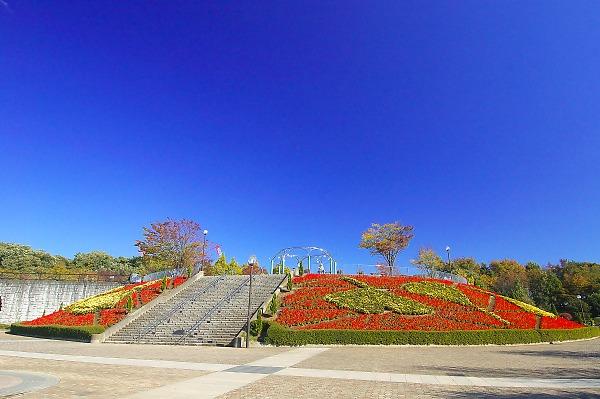 Sagamiharapark33