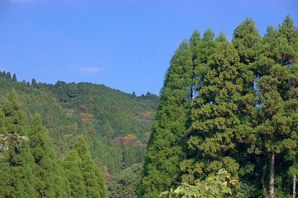 20071123awamatanotaki21