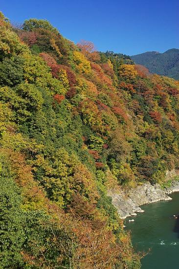20071124sagamikooku03_2