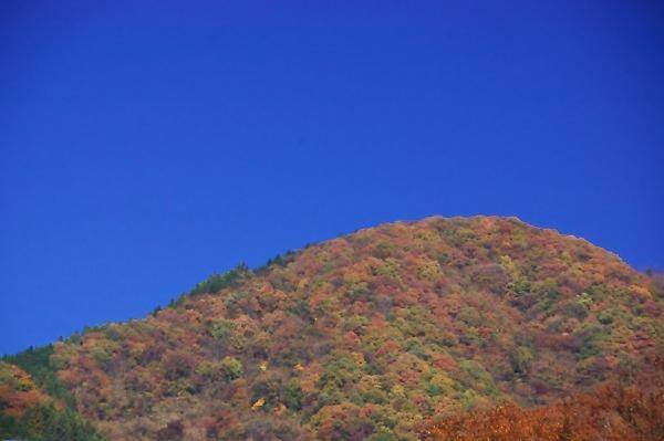 20071124sagamikooku22
