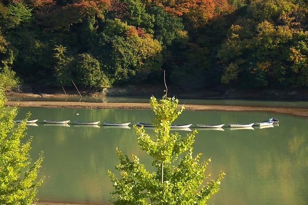 20071124sagamikooku39