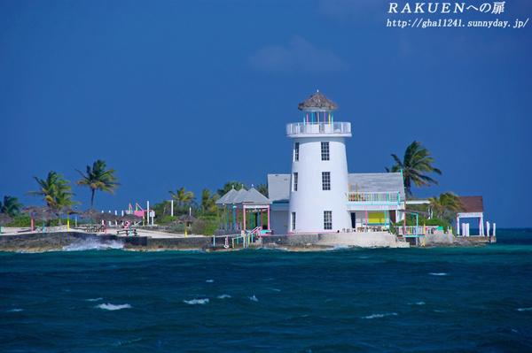 Bahamas_rose1